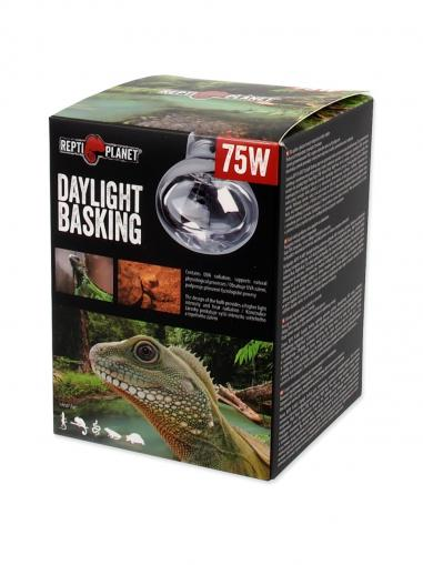 Repti Planet Žárovka Daylight Basking Spot 75 W
